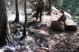 Crews Put out Fire in Forest Lands